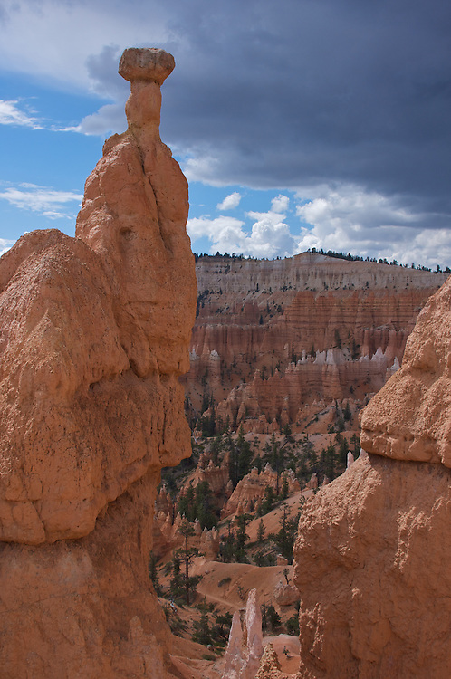 One of the most famous hoodoos in Bryce Canyon National Park