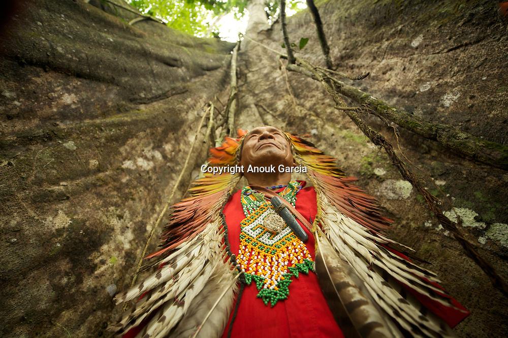 Sabindo Huni Kuin au pied d'un arbre géant. | Sabindo Huni Kuin at the bottom of a giant tree