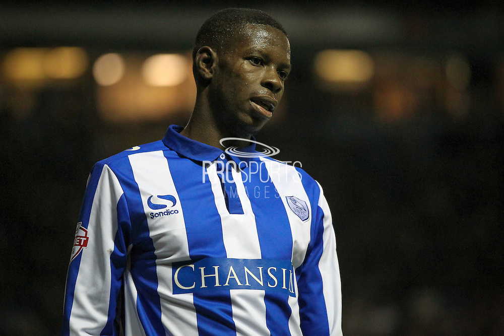 Lucas Joao (Sheffield Wednesday) during the Sky Bet Championship match between Sheffield Wednesday and Blackburn Rovers at Hillsborough, Sheffield, England on 5 April 2016. Photo by Mark P Doherty.
