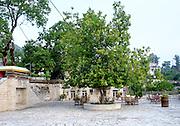 A courtyard restaurant Kastoria, Macedonia, Greece