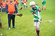 Jamie Nutley  Ballymacward<br />  Photo: Andrew Downes XPOSURE