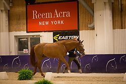 Kittel Patrick (SWE) - Watermill Scandic HBC <br /> Reem Acra FEI World Cup Goteborg 2013<br /> © Dirk Caremans