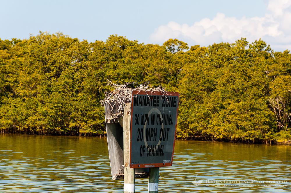 US, Florida. Ten Thousand Islands, Everglades.