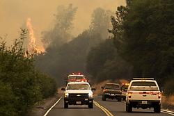 July 18, 2017 - Mariposa County, California, U.S. - The Detwiler fire burns along Highway 49 in Mariposa County. (Credit Image: © Andrew Kuhn/The Merced Sun Star via ZUMA)
