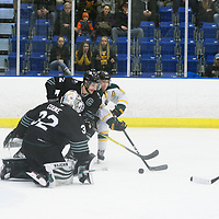 2nd year forward Tristan Frei (13) of the Regina Cougars in action during the Men's Hockey Shine On Game on December 2 at Co-operators arena. Credit: Arthur Ward/Arthur Images