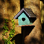 A colorful birdhouse hangs on a tree next to a wooden fence.