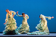 16/02/2015. A regular feature at Sadler's Wells annual Flamenco Festival, this year's Gala Flamenca programme features some of the most exciting figures on the flamenco scene, bringing together an array of talents and disciplines in one spectacular show. Featuring Carmen Coy, Karime Amaya,  & Lucia Campillos.