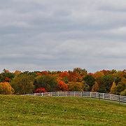"""Painting October""<br />