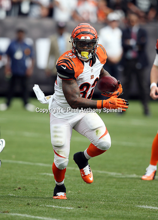 Cincinnati Bengals running back Jeremy Hill (32) runs for a 3 yard touchdown and a 7-0 first quarter Bengals lead during the 2015 NFL week 1 regular season football game against the Oakland Raiders on Sunday, Sept. 13, 2015 in Oakland, Calif. The Bengals won the game 33-13. (©Paul Anthony Spinelli)