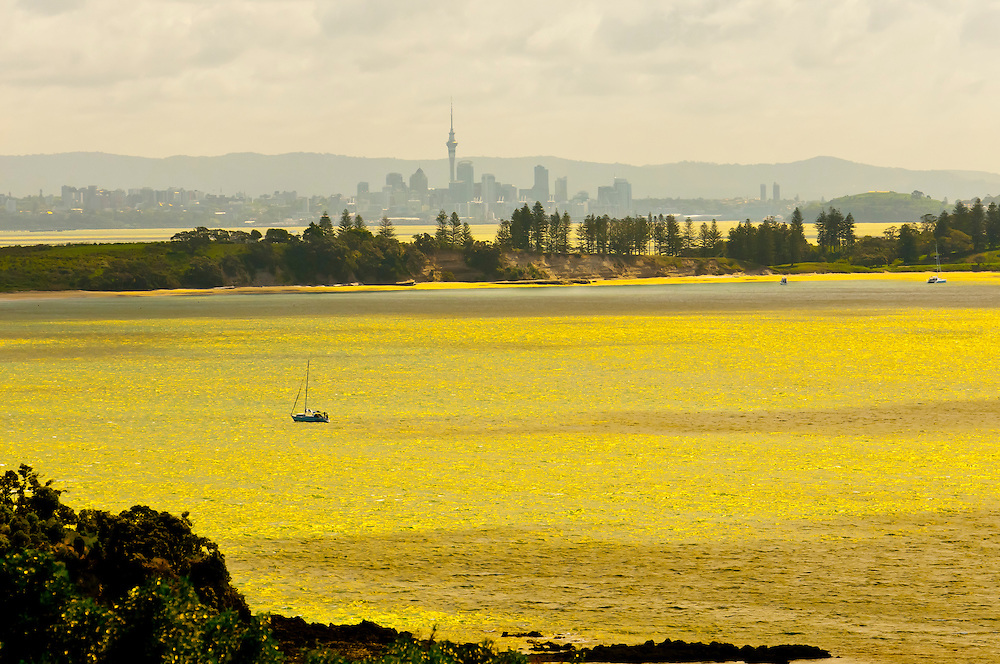 Hauraki Gulf (with the skyline of Auckland in background), seen from Waiheke Island, near Auckland, New Zealand