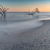 Boneyard Beach at Botany Bay, on Edisto Island, SC, during sunset.