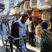 The Kabul Bird Market