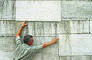 Jacques Morey, manager of the monument, points out replacement stones that are of a different type to the original...(Please check with Alan Freeman whether to use this picture -- he thinks maybe too sensitive)..Photo taken 10 May 2000 at the Canadian War Memorial at Vimy, France..Credit: Justin Jin