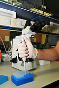 Research Laboratory Gloved hand uses a pipette