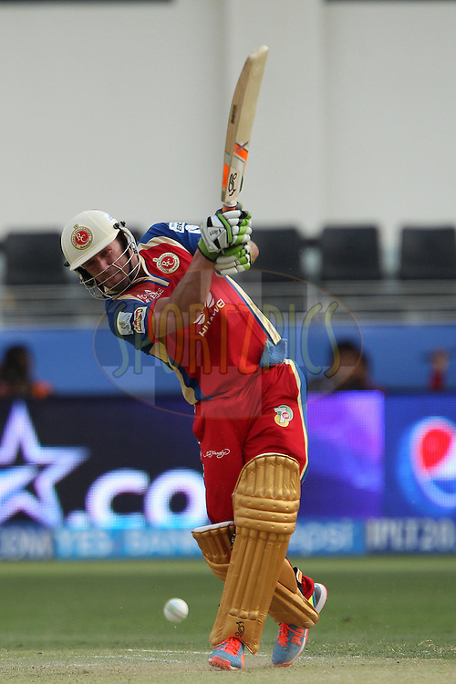 AB de Villiers of the Royal Challengers Bangalore during match 5 of the Pepsi Indian Premier League Season 7 between the Royal Challengers Bangalore and the Mumbai Indians held at the Dubai International Cricket Stadium, Dubai, United Arab Emirates on the 19th April 2014<br /> <br /> Photo by Ron Gaunt / IPL / SPORTZPICS