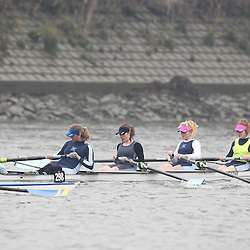 297 - Weybridge WJ164+ - SHORR2013