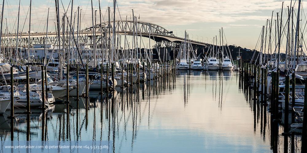 Westhaven, Auckland, New Zealand. Harbour bridge behind