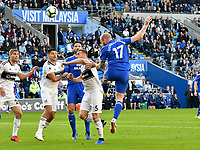 Football - 2018 / 2019 Premier League - Cardiff City vs. Fulham<br /> <br /> Aron Gunnarsson of Cardiff City heads at goal, at Cardiff City Stadium.<br /> <br /> COLORSPORT/WINSTON BYNORTH