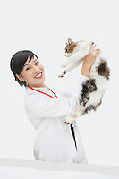Portrait of female veterinarian holding up cat against gray background