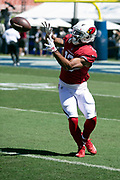 Arizona Cardinals rookie wide receiver Christian Kirk (13) catches a pass while warming up before the 2018 NFL regular season week 2 football game against the Los Angeles Rams on Sunday, Sept. 16, 2018 in Los Angeles. The Rams won the game in a 34-0 shutout. (©Paul Anthony Spinelli)