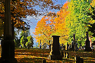 Autumn Landscape Berkshires New England