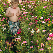 Wrightsville Beach, NC - JUNE 2: L. Berry and her son C.  play in flowers near Wrightsville Beach, NC. (Photo by Logan Mock-Bunting)