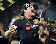 Los Angeles FC fan in the 32352 section celebrates during a MLS soccer match in Los Angeles, Saturday, April 13, 2019. LAFC defeated FC Cincinnati 2-0. (Ed Ruvalcaba/Image of Sport)