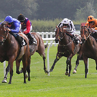 Lingfield 3rd September