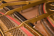 strings and hammers inside a grand piano