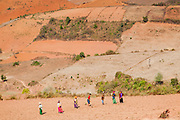Farmers working on the fields (Myanmar)