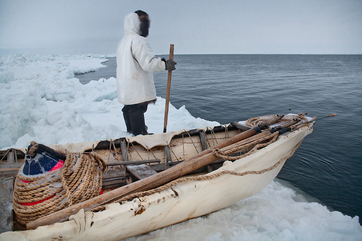 Young Iñupiat hunter with skin boat, scans the Chukchi Sea for whales, Point Hope, Alaska.