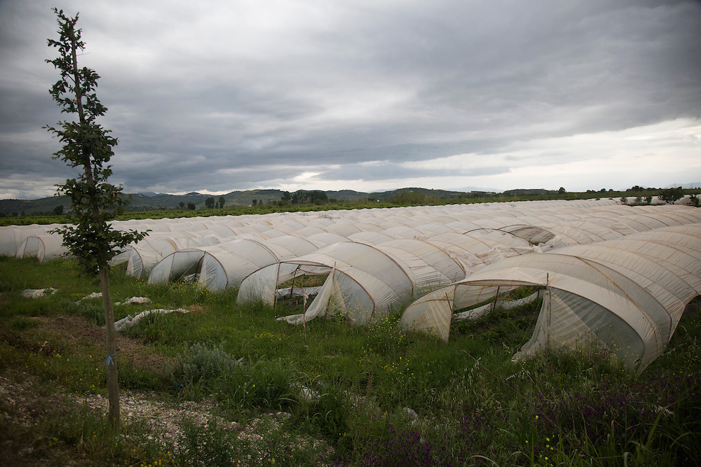 Plastic tunnels allow farmers to get a head start on the growing season in the rich farmland of the delta of the Vjosa River, where it flows into Adriatic Sea.