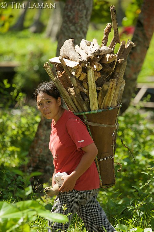 Labilabi village woman returns with firewood.