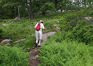 Bear Mountain, New York - A man hikes on the Appalachian Trail at Bear Mountain on June 5, 2010.
