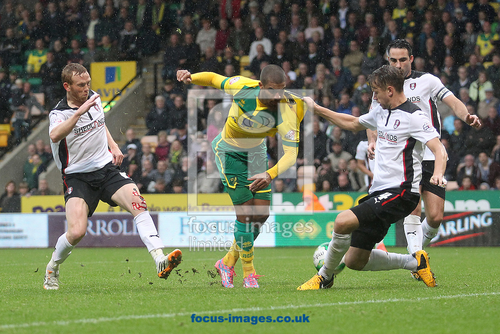 Lewis Grabban of Norwich is held by K&aacute;ri &Aacute;rnason of Rotherham United as he has a shot on goal during the Sky Bet Championship match at Carrow Road, Norwich<br /> Picture by Paul Chesterton/Focus Images Ltd +44 7904 640267<br /> 04/10/2014