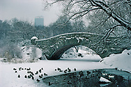 Central Park covered by snow,  Gapstow Bridge, designed by Howard & Caudwell in 1896, Park designed by Frederick Law Olmsted and Calvert Vaux, Manhattan, NYC, NY