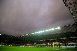 SWANSEA, WALES - Sunday, March 2, 2014: Swansea City take on Crystal Palace during the Premiership match at the Liberty Stadium. (Pic by David Rawcliffe/Propaganda)