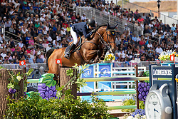 Baryard-Johnsson Malin, SWE, H&M Indiana<br /> World Equestrian Games - Tryon 2018<br /> © Hippo Foto - Dirk Caremans<br /> 21/09/2018