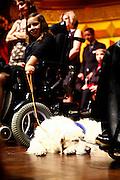 Wiesbaden | 30.10.2010..Vita Gala im Kurhaus Wiesbaden, hier: Huendin Eve und die kleine Pauline im Rollstuhl...©peter-juelich.com..[No Model Release | No Property Release]