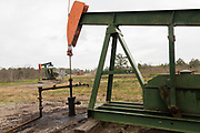 An oil pumpjack pulling crude out of the first oil fields in Evangeline, Louisiana. The oil fields were the first wells in Louisiana.