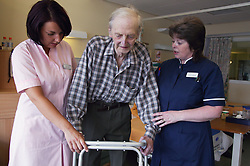 Nurse with disability and health care worker assisting elderly patient to mobilise using Zimmer frame,
