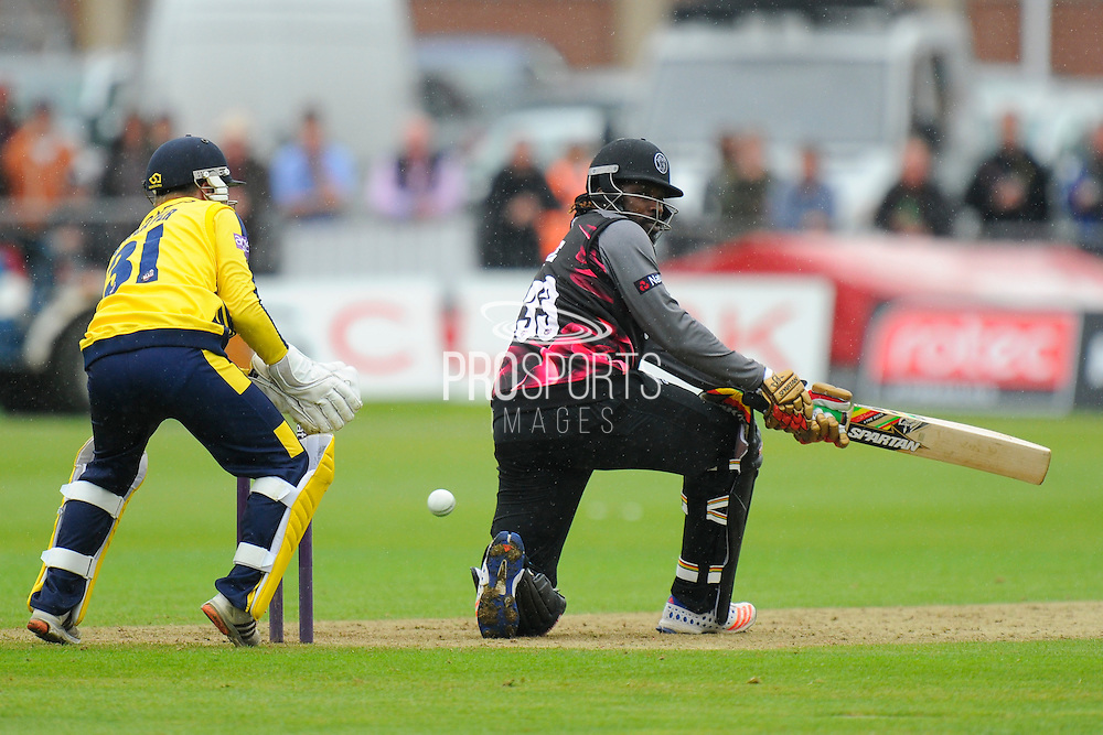 50 for Chris Gale - Somerset's Chris Gayle scoring his half century during the NatWest T20 Blast South Group match between Somerset County Cricket Club and Hampshire County Cricket Club at the Cooper Associates County Ground, Taunton, United Kingdom on 19 June 2016. Photo by Graham Hunt.