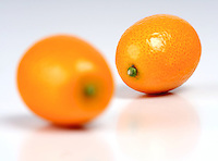 Kumquats on white background  - studio shot