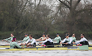London, Great Britain, Cambridge, Listo, left to right, cox, Hugo RAMAMBASON, Ben RUBLE, Henry HOFFSHOT, Vencent BERTRAM and Clemens AUERSPERG, during  the BNY Mellon, 2016 University Men's Boat Race, Trail Eights Race.  Putney to Mortlake. ENGLAND. <br /> <br /> Sunday 13.12.2015<br /> <br /> [Mandatory Credit; Peter Spurrier/Intersport-images]<br /> <br /> CUBC Trial VIII's between FUERTE on Surrey and LISTO on Middlesex<br /> <br /> FUERTE, Bow, Peter Carey, 2, Patrick Elwood, 3, Alister Taylor, 4, Peter Rees, 5, Charlie Fisher, 6, Ali Abbasi, 7, Luke Juckett, Stroke, Lance Tredell, Cox, Ian Middleton<br /> <br /> LISTO, Bow, Piers Kasas, Felix Newman, 3, Sam Ringer, 4, Joe Carroll, 5, Clemens Auersperg, 6, Vincent Bertram, 7, Henry Hoffstot, Stroke, Ben Ruble, Cox, Hugo Ramambason