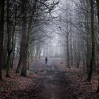 Figure of a young person standing on a path in woods during winter