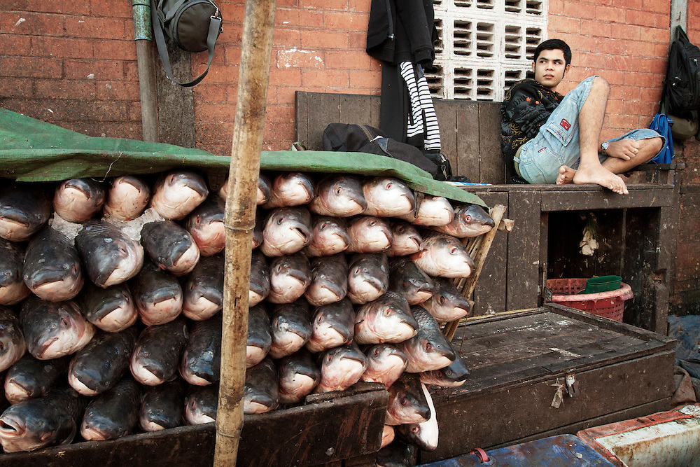 A fisher takes a break at the fish market after the morning rush in Yangon, Myanmar.