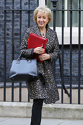 © Licensed to London News Pictures. 08/01/2019. London, UK. Andrea Leadsom - Lord President of the Council and Leader of the House of Commons departs from No 10 Downing Street after attending the weekly Cabinet Meeting. Photo credit: Dinendra Haria/LNP