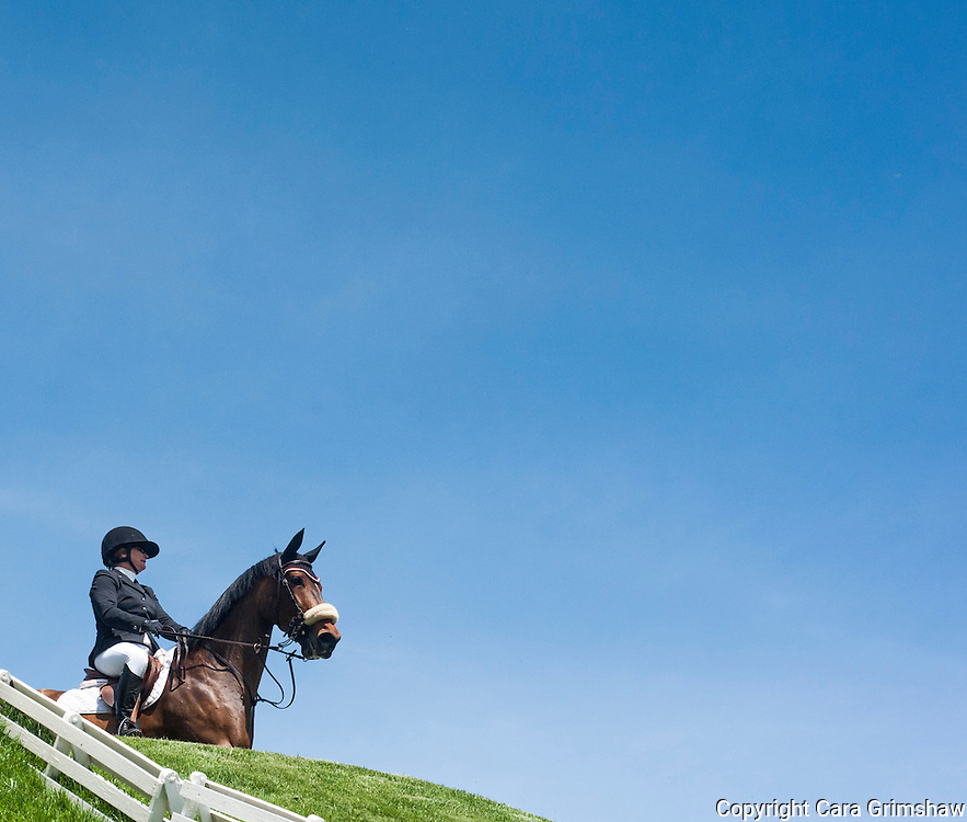 LISA CARLSEN (CAN) rides WORLDS JUDGEMENT in the  1.50m Derby Nexen Cup during National CSI 5* at Spruce Meadows presented by Rolex, June 7 2015. Calgary.