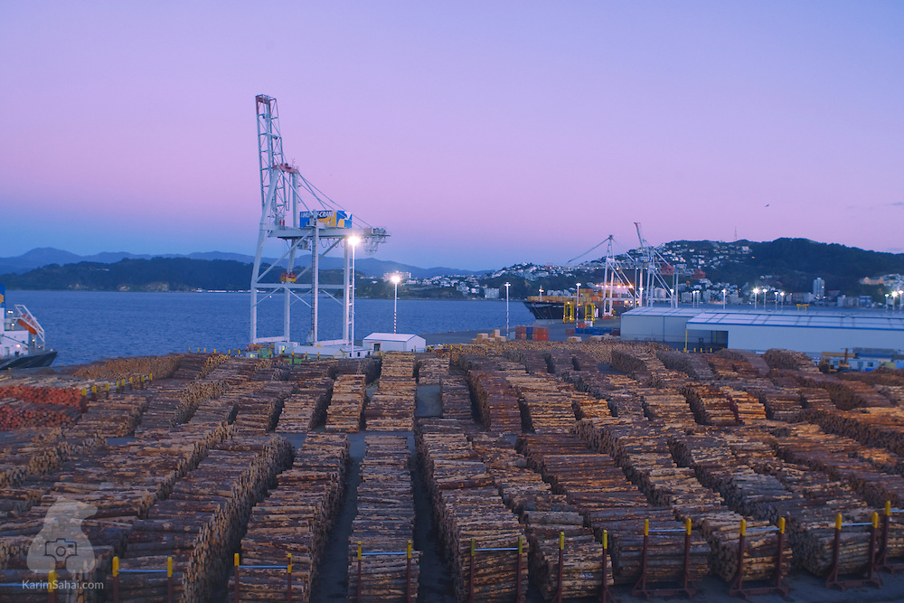 A large number of pine logs are stacked at Fryatt Quay in Wellington, New Zealand. Along with wool and dairy products, timber is one of New Zealand's main exports.