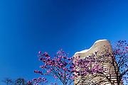 Belo Horizonte_MG, Brasil...Edificio Niemeyer na Praca da Liberdade em Belo Horizonte, ele foi projetado pelo arquiteto Oscar Niemeyer em Belo Horizonte, Minas Gerais...The Niemeyer building in Liberdade square, it was designed by architect Oscar Niemeyer in Belo Horizonte, Minas Gerais...Foto: JOAO MARCOS ROSA / NITRO..